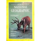 National Geographic, November 1981