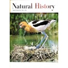 Natural History, August 1965