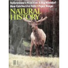 Natural History, August 1989