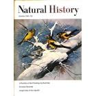 Natural History, December 1966