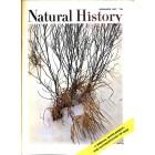 Natural History, December 1967