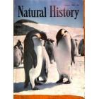 Natural History, February 1959