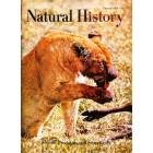 Natural History, February 1967