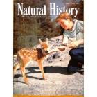 Natural History, June 1956