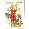 Natural History, June 1961