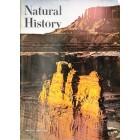 Natural History, June 1965