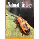 Natural History, May 1955