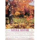 Natural History, November 1946