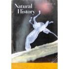 Natural History, November 1959