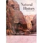 Natural History, November 1965