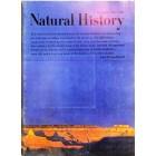 Natural History, November 1967
