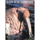 Natural History, November 1977
