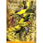 Natural History, October 1964
