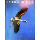 Natural History, October 1971