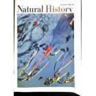 Natural History , June 1968