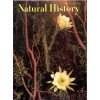 Cover Print of Natural History , June 1969