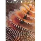 Cover Print of Natural History , March 1973