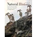 Natural History , October 1967
