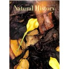 Natural History , October 1968
