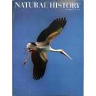 Natural History , October 1971