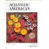 Cover Print of Scientific American, April 1955