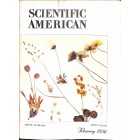 Cover Print of Scientific American, February 1956