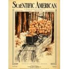Scientific American, January 10, 1920. Poster Print.