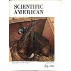 Scientific American, July 1954