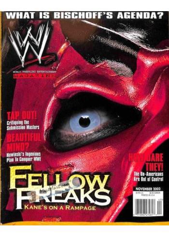 World Wrestling Entertainment, November 2002